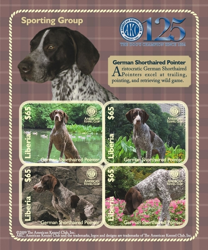 DOGS OF THE AMERICAN KENNEL CLUB-SPORTING GROUP GERMAN SHORTHAIRED POINTER SHEETLET OF 4 X $65 stamps