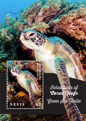 Gr/ünspecht 1500-V1 Pa/ñales de Gasa Coral
