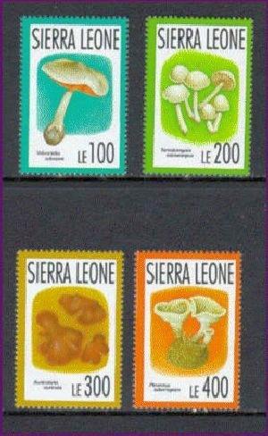 SIE9101C0